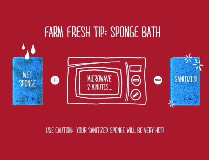 Sponge Bath