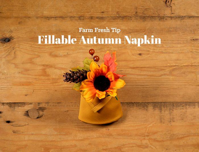 Fillable Napkin
